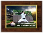 Stadium Big Screen Plaque - BASEBALL