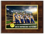 Stadium Big Screen Plaque - SOFTBALL