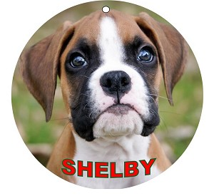 Round 3-inch Aluminum Photo Pet Christmas Ornament